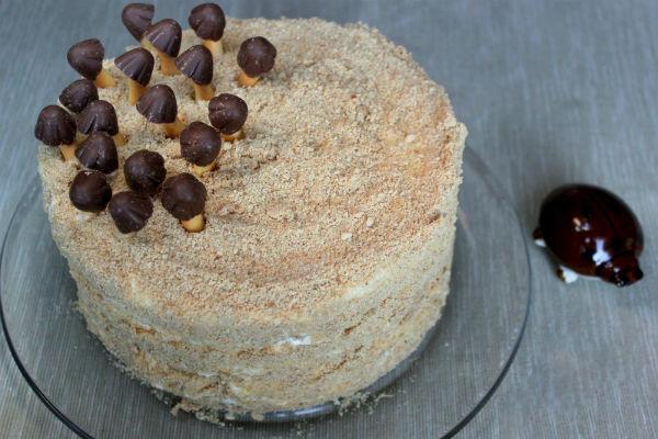 Торт «Трухлявый пень» 2