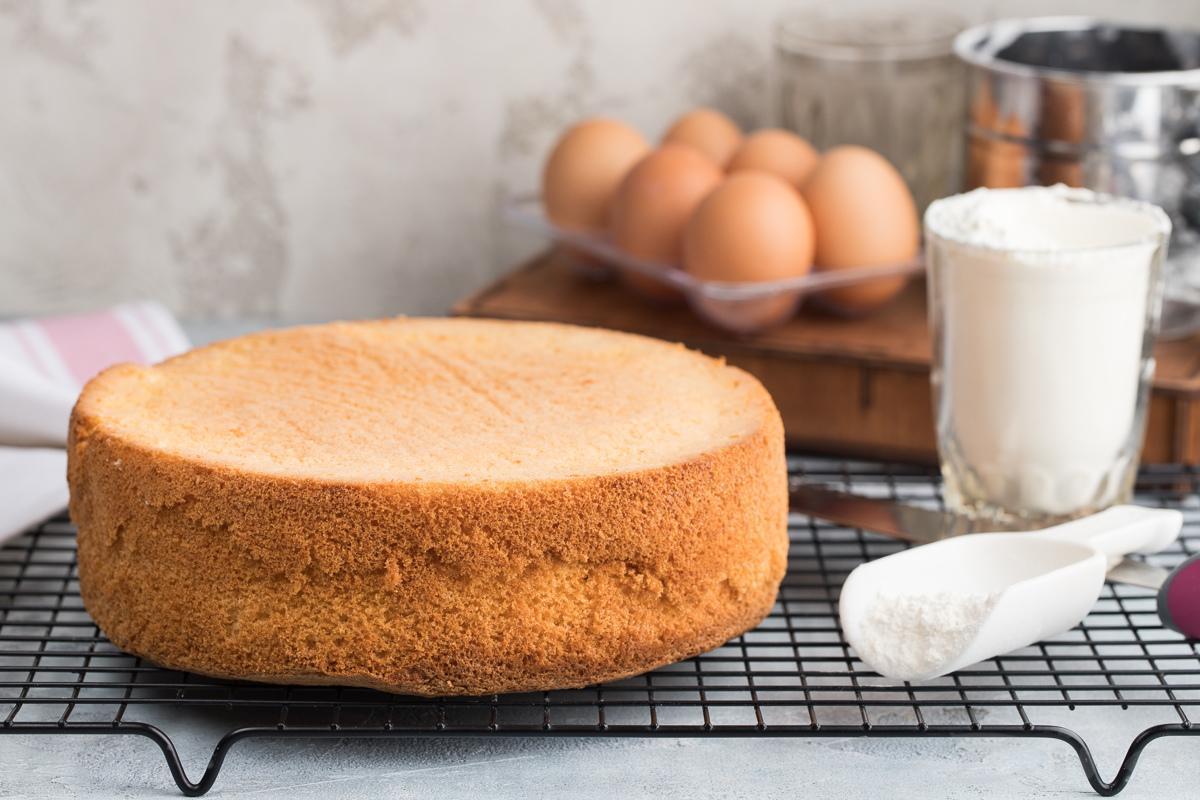 Можно ли замораживать бисквит для торта - фото